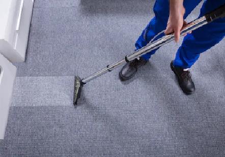 best carpet cleaner in Whistler